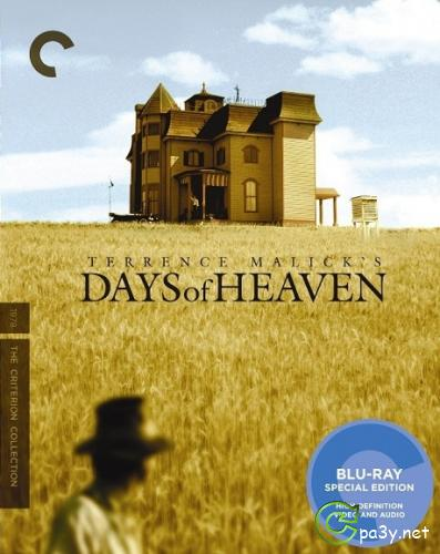 Дни жатвы / Days of Heaven (1978) HDRip
