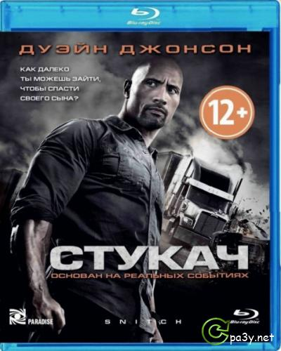 Стукач / Snitch (2013) BDRip 1080p | Лицензия